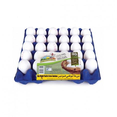 Abudhabi Large Eggs 30's