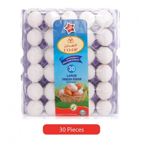 Co-Op-Fresh-White-Eggs-Large-30-Pieces_Hero