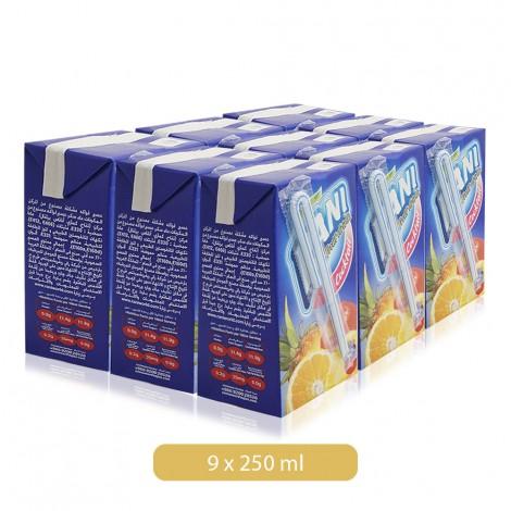 Rani-Cocktail-Fruit-Drink-9-250-ml_Hero