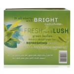 Lipton-Mint-Clear-Green-Tea-100-x-1.5-g_Back
