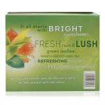 Lipton-Moroccan-Mint-Green-Tea-100-x-1.8-g_Back