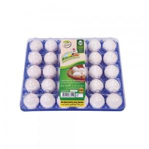 Abudhabi Eggs Large 30s