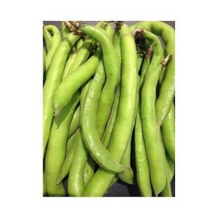 Broad Beans (Foul), Egypt, Per Kg