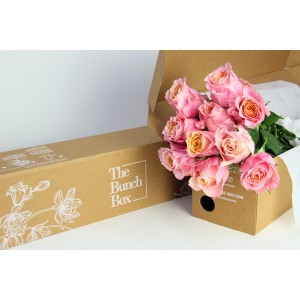 Jabulani Pink Rose